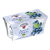 Yogurt Mirtillo Sapori di Vipiteno Gr. 125 x 2