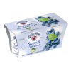 Yogurt Mirtillo Sapori di Vipiteno Gr. 125 x 2
